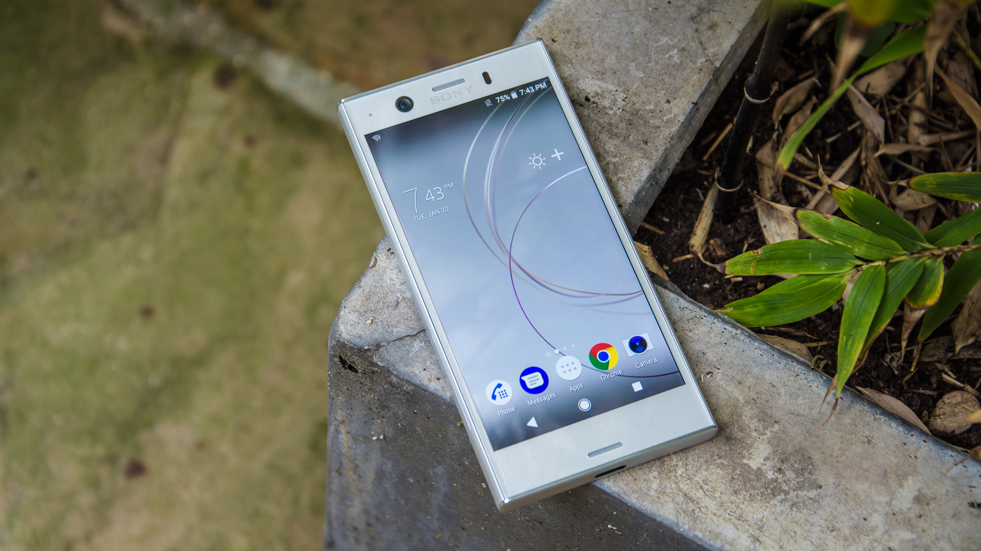Best Smartphone The BEST UK Phones You Can Buy From Google - Smartphones mean you dont need a fancy camera to take an amazing photo
