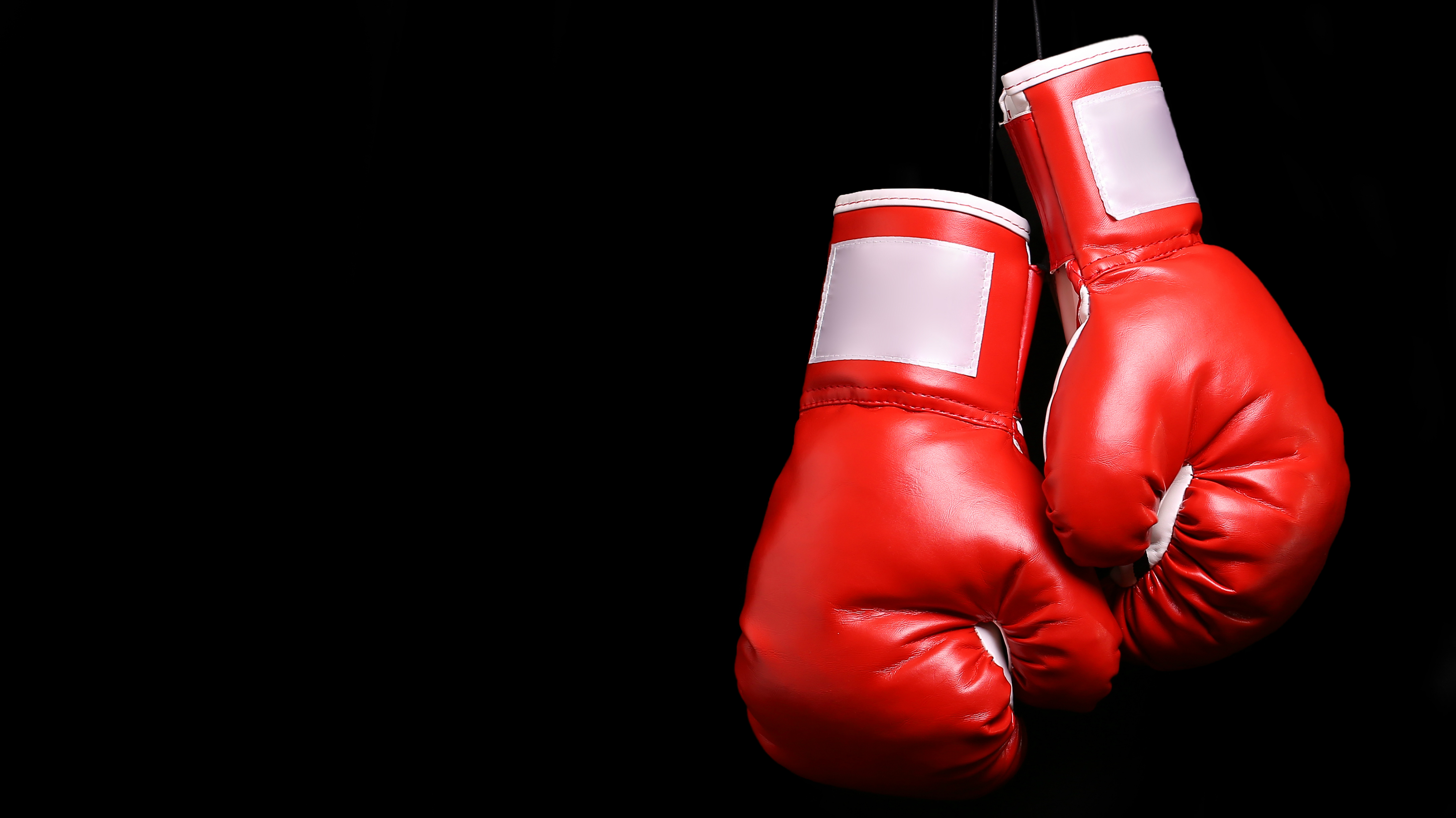 Shiv Naresh Teens Boxing Gloves 12oz: Best Boxing Gloves 2018: The Best Gloves Around, From
