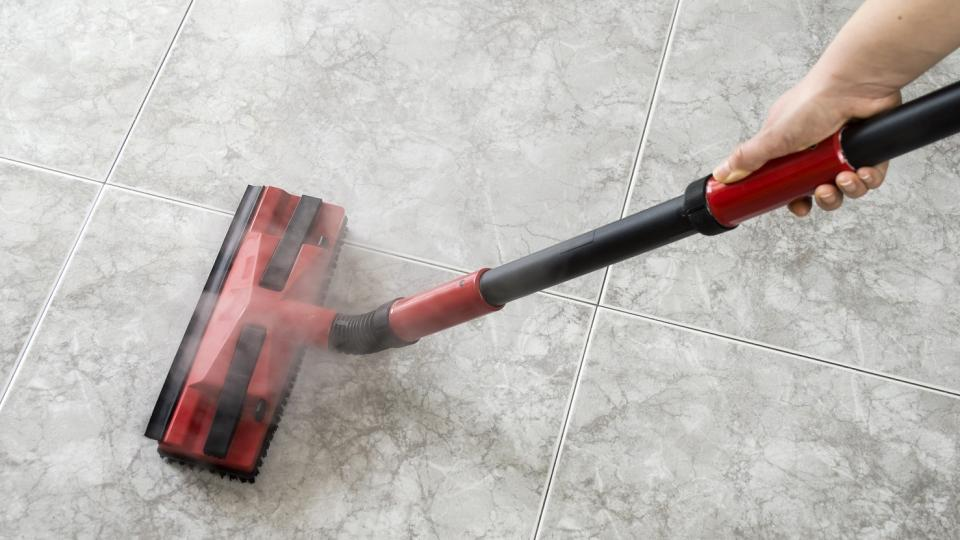 The 5 Best Home Steam Cleaners Of 2018 Bring The Power Of