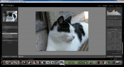 Lightroom 3 manual lens correction