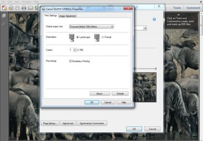 Canon Selphy CP900 Print Settings