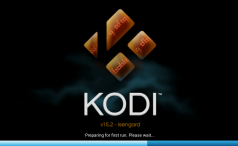 Kodi installation Fire TV Stick
