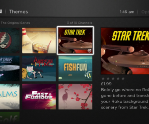 Roku themes screenshot