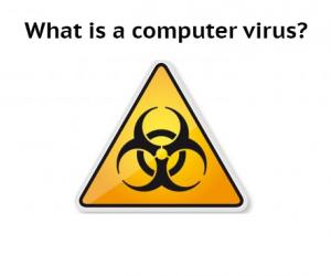 What is a computer virus header